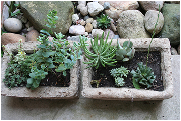 Realizzare una fioriera in muratura giardinaggio fai da te for Idee per realizzare una fioriera