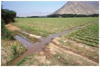 Creare un semplice sistema di irrigazione giardinaggio fai for Sistema irrigazione fai da te